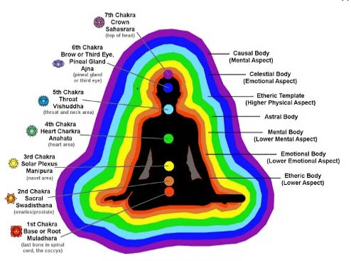 Diagram 8: The chakras and auric layers