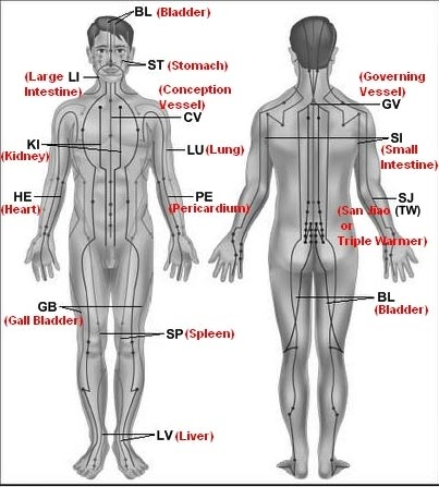 Diagram 6: The meridians of the body